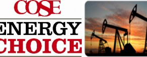 Chamber & COSE Collaborate on Energy Offerings